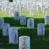 For Celebration, Sacrifice, and Summer: A Brief Reflection on Memorial Day