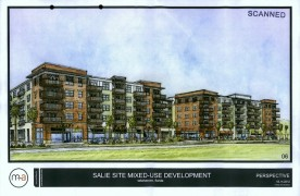 Gaines Street Development Draws Criticism From Business Owners