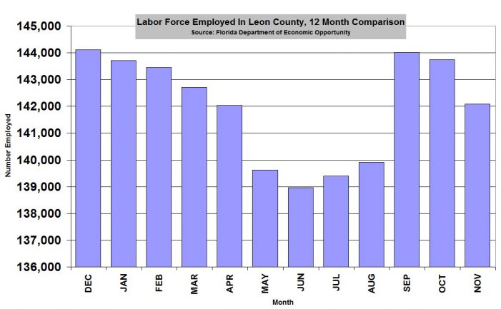 Leon County Employment Falls in November