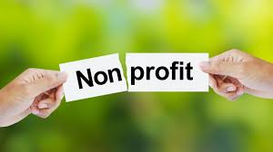 Stewart's Blog: Elected Officials Working for Non-Profits is a Bad Idea