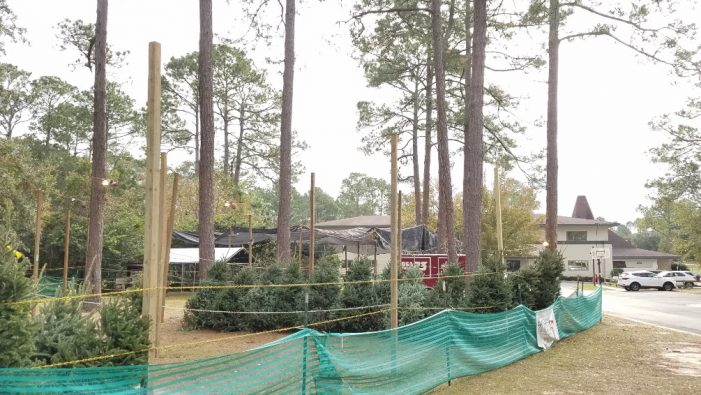 Local Scouting Troop Sells Christmas Trees at Killearn United Methodist Church