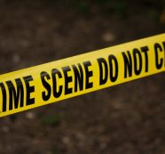 Crime Tracker: 400 Incidents Reported in August