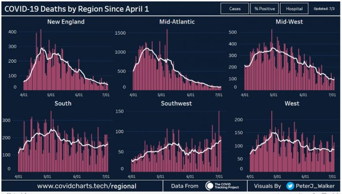 Regional Charts Show Variation in COVID Deaths